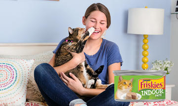 Friskies Indoor Wet Cat Food
